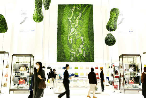 Living Art Installations Animals + Nature Art + Graphics