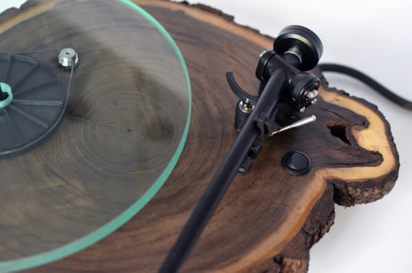 Real Tree Trunk Turntable Design