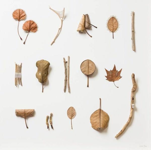 Leaf Art – The Delicate Sculptures by Susanna Bauer Art + Graphics