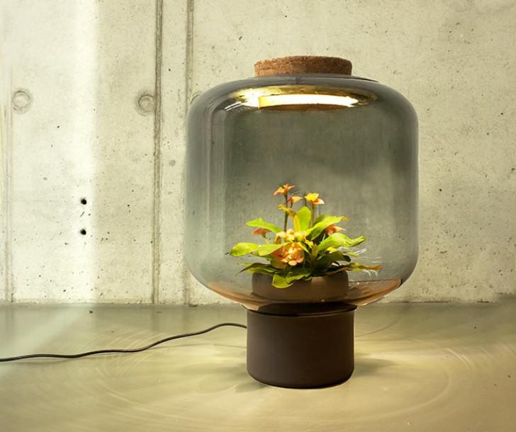 Plantlamp – Beautiful Lamps for Growing Your Plants Indoor Design
