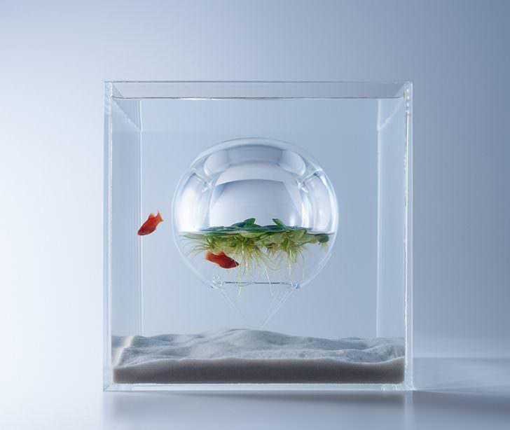 Artistic Aquariums From Haruka Misawa Design Lifestyle