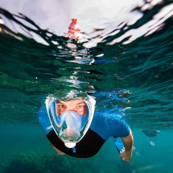 Diving Snorkeling Mask with Xxl Vision Animals + Nature Lifestyle