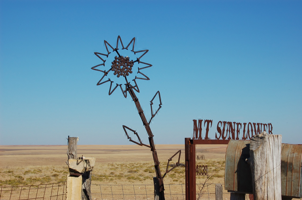 Mount Sunflower: The Tallest Peak With The Easiest Climb Photography