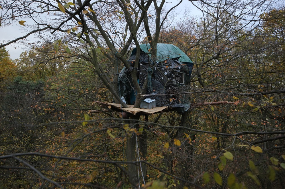 The Treetop Squatters of Hambach Forest Photography