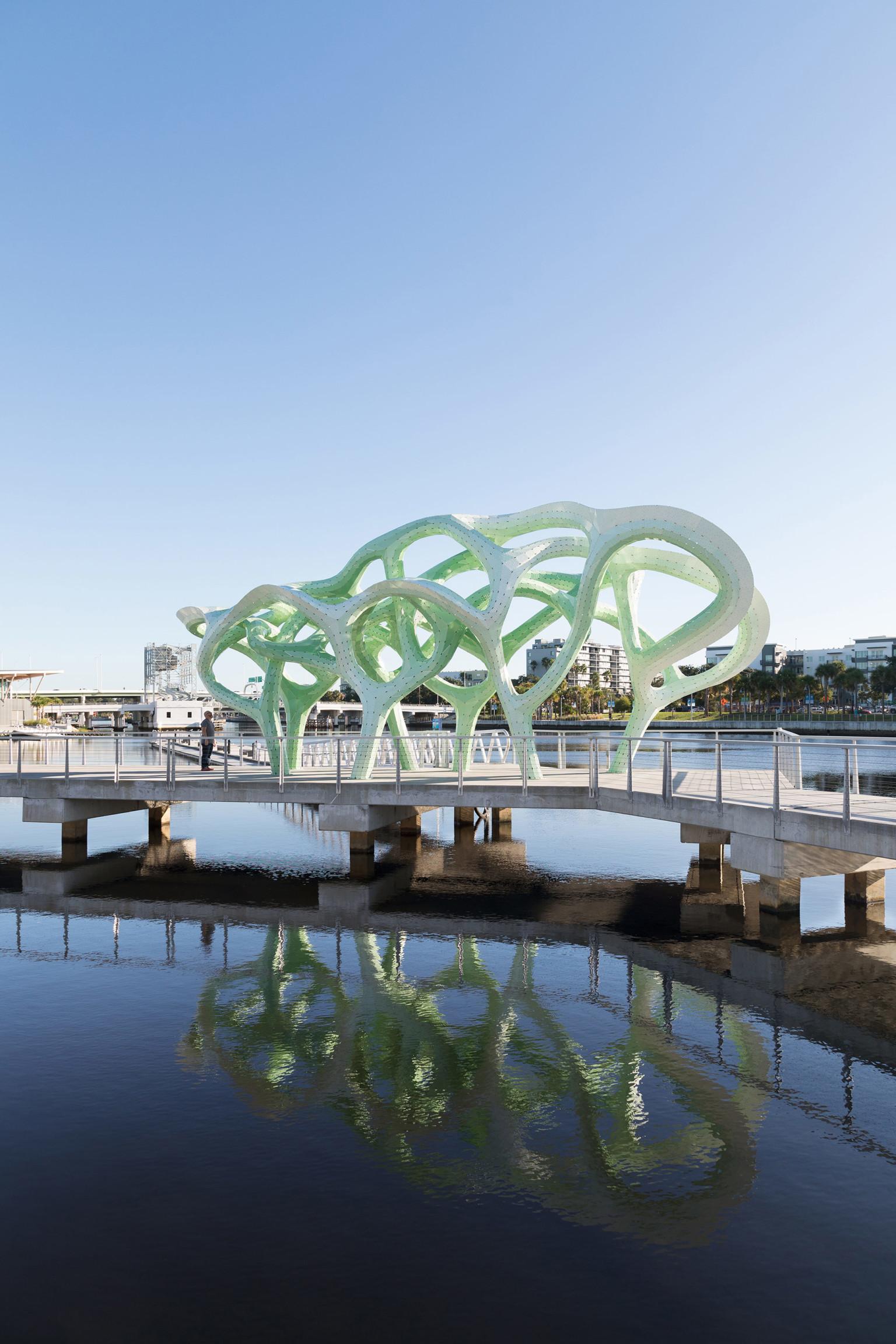 An Installation Looking like a Mangrove Trees – Fubiz Media Design