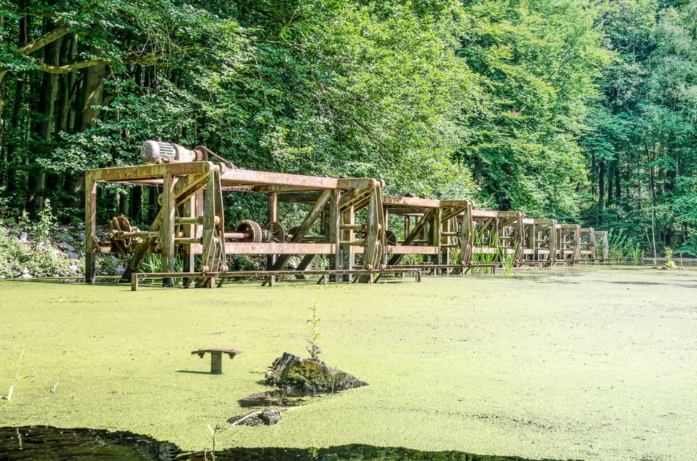 Waterloopbos: Where Dutch Engineers Learned to Play With The Sea Photography